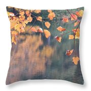 Subtle Autumn Reflections Throw Pillow