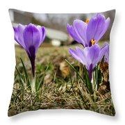 Suburban Spring Throw Pillow