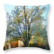 Suburbs - Late Afternoon In Spring Throw Pillow