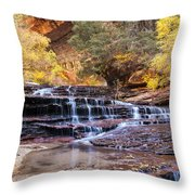 Subway Trail Throw Pillow