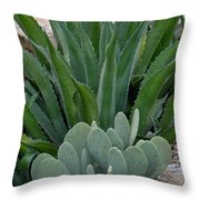 Succulent Greens Throw Pillow