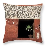 Succulent In Window Throw Pillow