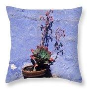 Succulent Blue Throw Pillow