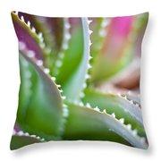 Succulent Swirls Throw Pillow