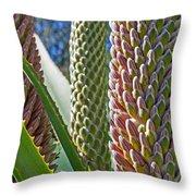 Succulents IIi Throw Pillow