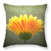 Such Joy In The Light Throw Pillow