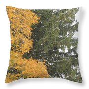 Sugar Maple And Evergreen Throw Pillow