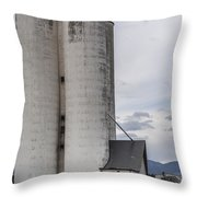 Sugar Mill Throw Pillow by Aaron Spong