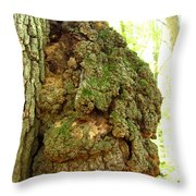 Sugarloaf Burl Throw Pillow