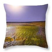 Sulphur Beach  Throw Pillow