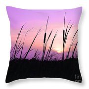Sultry Sunset Throw Pillow