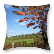 Sumac Fence Throw Pillow