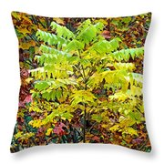 Sumac Leaves In The Fall Throw Pillow