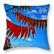 Sumac Red Throw Pillow