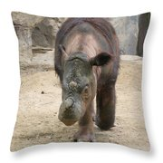 Sumatran Rhinoceros  Throw Pillow
