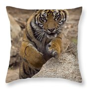 Sumatran Tiger Cub Jumping Onto Rock Throw Pillow