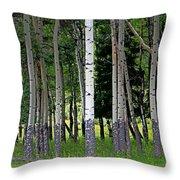 Summer Aspen Throw Pillow