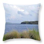 Summer At Guana Lake Throw Pillow