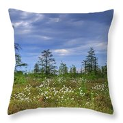 Summer At The Bog... Throw Pillow