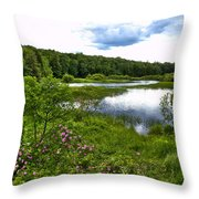 Summer At The Green Bridge Throw Pillow