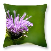Summer Balm Throw Pillow