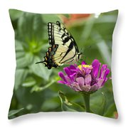 Summer Butterfly Throw Pillow
