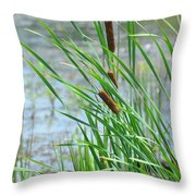 Summer Cattails In The Breeze Throw Pillow