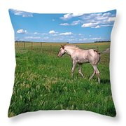 Summer Colt Throw Pillow