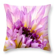 Summer Dahlia Throw Pillow