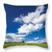 Summer Day Blue Sky Green Grass Throw Pillow