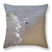 Summer Day Of A Gull 2 Throw Pillow