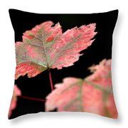 Summer Fall Throw Pillow