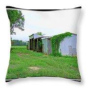 Summer Farm Sheds Throw Pillow