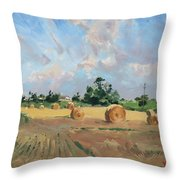 Summer Fields In Georgetown On Throw Pillow