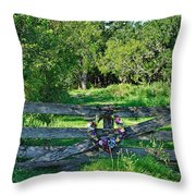 Summer Gate Throw Pillow