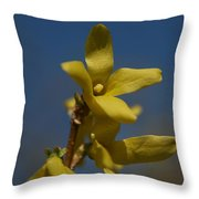 Summer Highlight Throw Pillow
