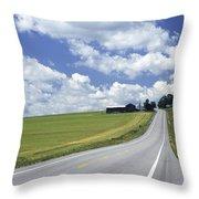 Summer Highway Throw Pillow