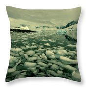Summer Ice Throw Pillow