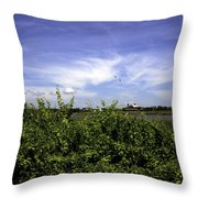 Summer In Bridgehampton Throw Pillow