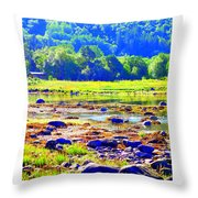 I Try To Keep The Summer Always In My Mind  Throw Pillow