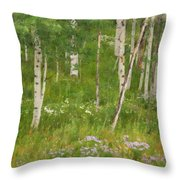 Summer In The Colorado Mountains Throw Pillow