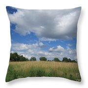 Summer Iowa Prairie Throw Pillow