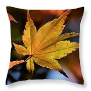 Summer Japanese Maple - 2 Throw Pillow