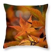 Summer Japanese Maple - 3 Throw Pillow