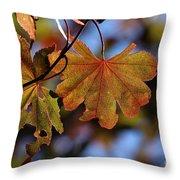 Summer Japanese Maple - 4 Throw Pillow