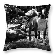 Summer Jewels Throw Pillow