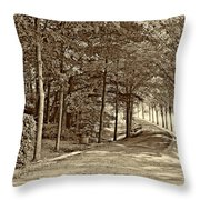 Summer Lane Sepia Throw Pillow