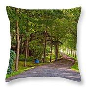 Summer Lane Throw Pillow
