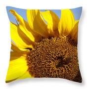 Summer Love Throw Pillow