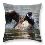 Summer Lovin - Canadian Goose Throw Pillow